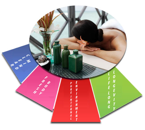silica supplement benefits