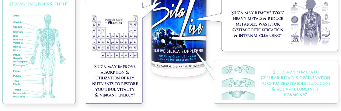 silalive benefits